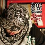 Stig Of The Dump - Mood Swings CD [Lewis Recordings]